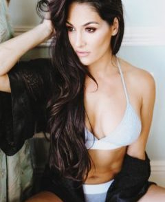 Nikki Bella Boob Slip